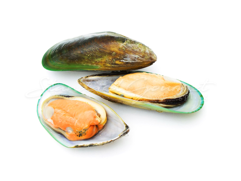 Mussel. Half Shell Local