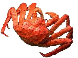 King Crab *Indent*